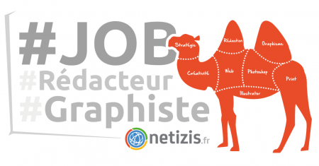 L'agence @netizis de Vesoul (70) recrute un #graphiste (H/F) multimédia (#Web / ...