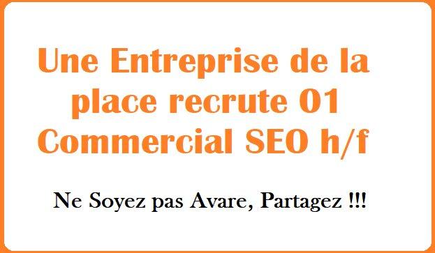 Une Entreprise de la place recrute 01 Commercial SEOh/f  ...