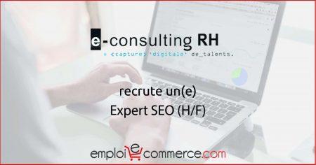 Vous cherchez un poste de Expert SEO ? E-Consulting RH recherche un candidat   #...